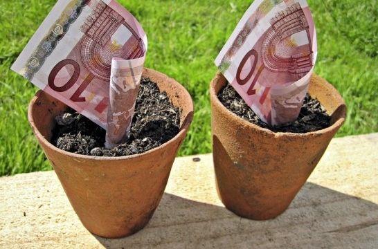 Dinero crece listadog