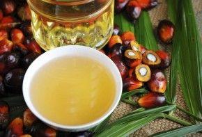 Img abc aceite palma