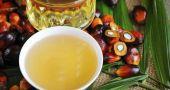 Img abc aceite palma listg