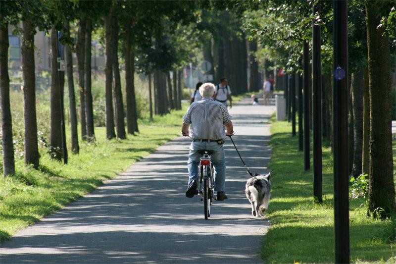 Img abuelo bici