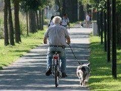 Img abuelo bici1