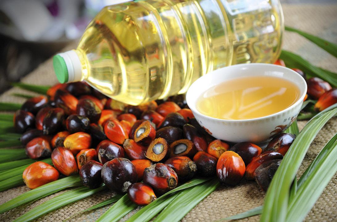 Zer gertatzen da palma-olioarekin?