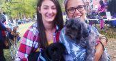 Img adoptar perros extranjeros