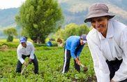 Img agriculturafamiliar182x120