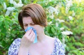 Img alergia primaveral control diabetes