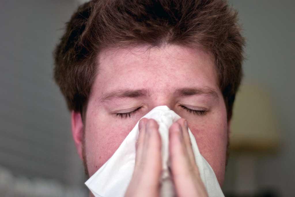 Img alergia