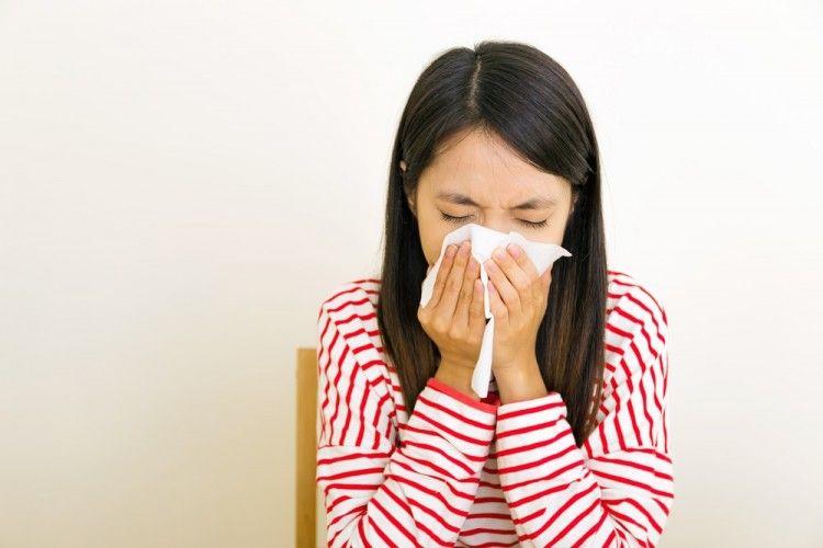 Img alergias aplicaciones polen alimentos art