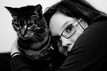 Img alergias gatos art