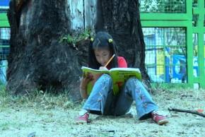 Img alfabetizacionagosto2015 articulook