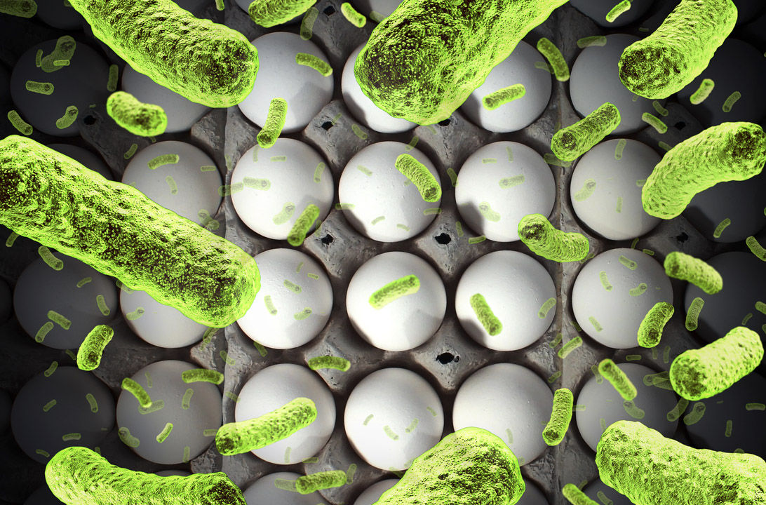img_aumentan casos salmonella hd