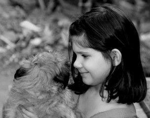 Img autismo infantil perros ninos animales terapia perros asistencia art