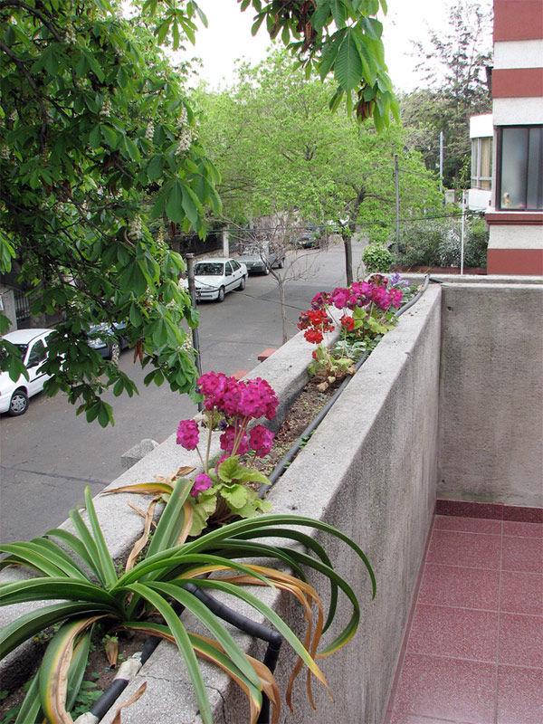 Img balcon flores