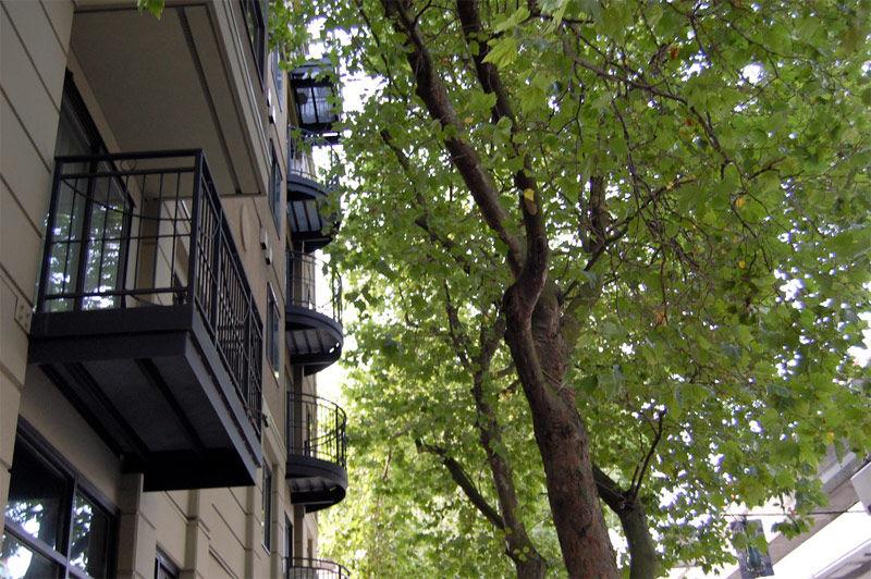 Img balcon