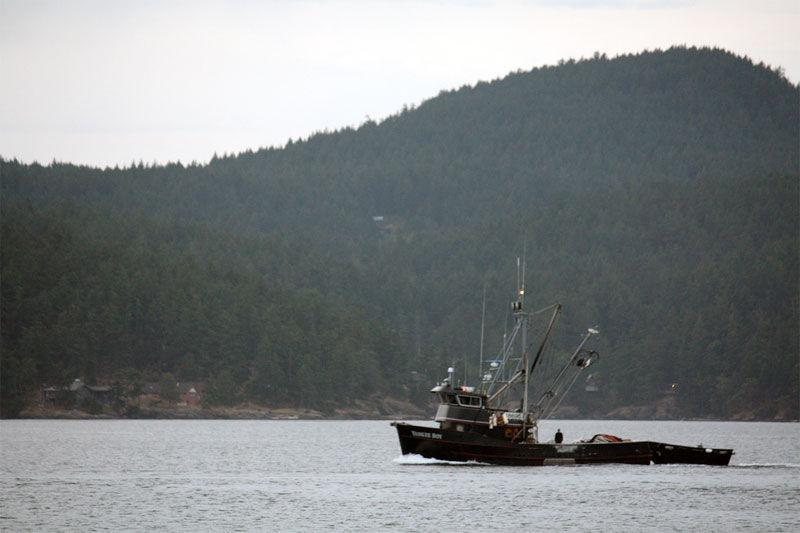 img_barco pescador