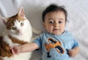 Img bebe mascota