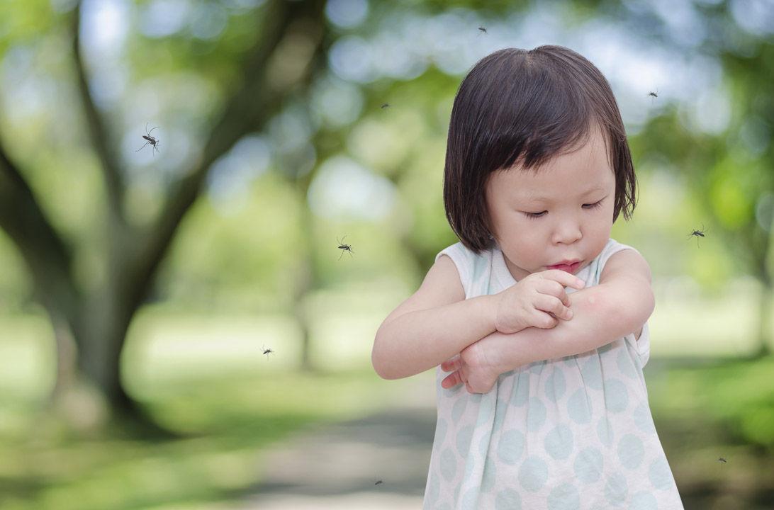 Img bebes usar repelente hd