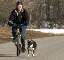 Img bicicleta perro art