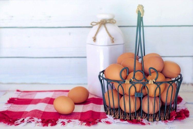 Img bienestar huevos art