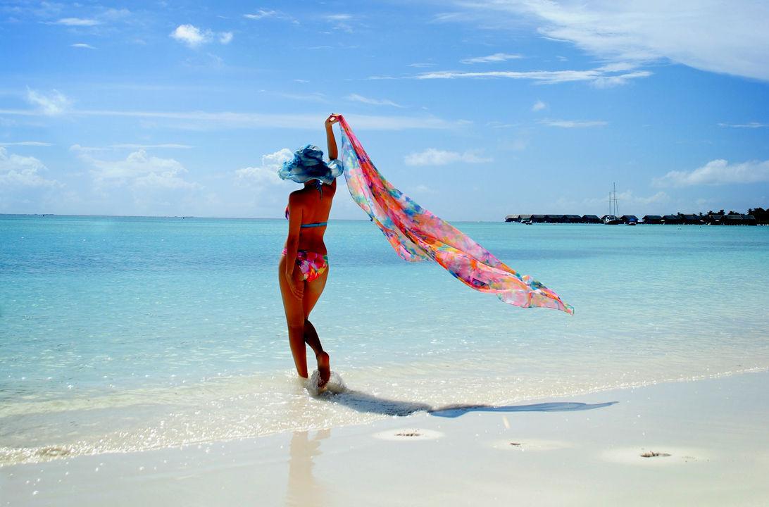 Img bikini playa hd