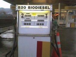 Img biodiesel