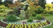 Img biodiversidad hd