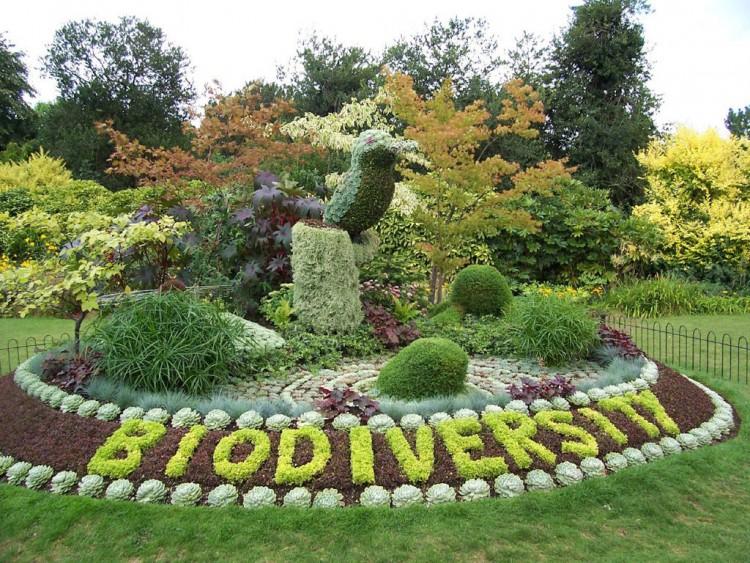 Img biodiversidad002