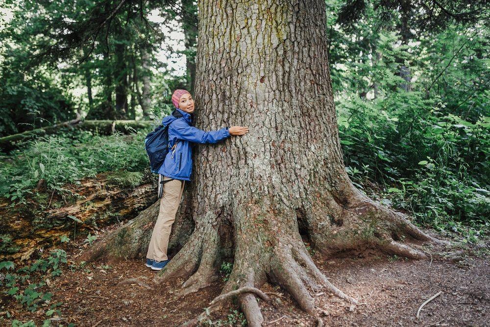 Img biodivertidad proteger