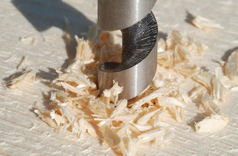 Img broca madera