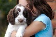 img_cachorro abrazo nino_ listado