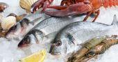 Img calcular cantidad pescado marisco segura port