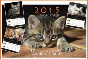 Img calendario benefico 2015