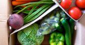Img carton verduras