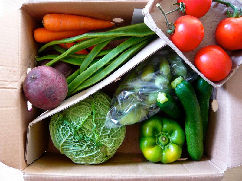 img_carton verduras