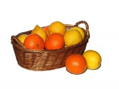 Img citricos3