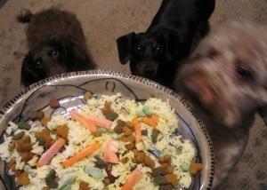 Img cocina light para perros recetas art