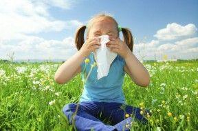 Img combatir alergias art
