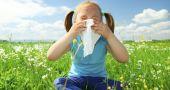Img combatir alergias hd