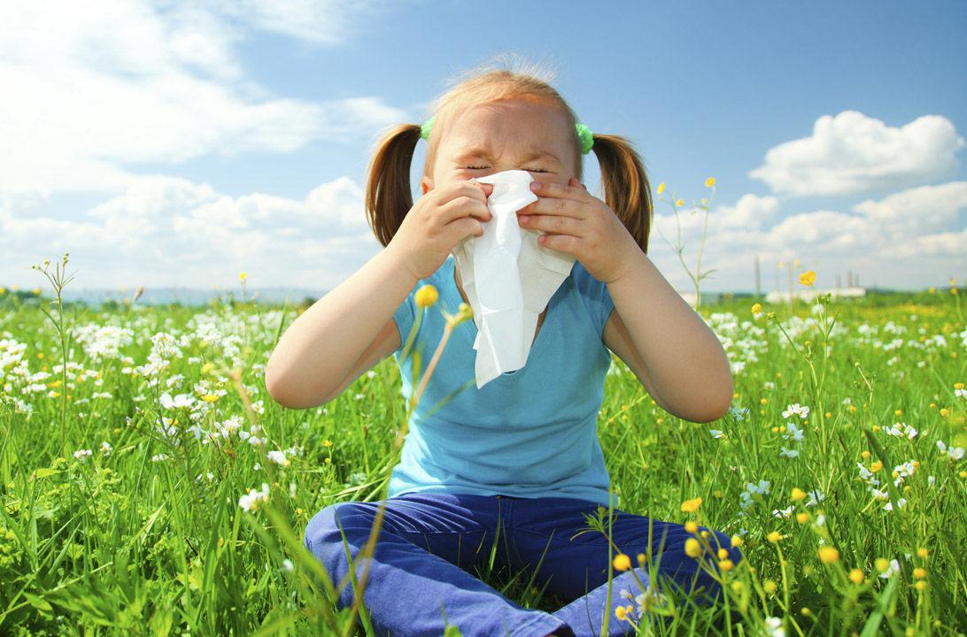 img_combatir alergias hd