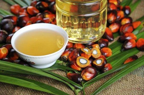 Img como evitar aceite palma hd