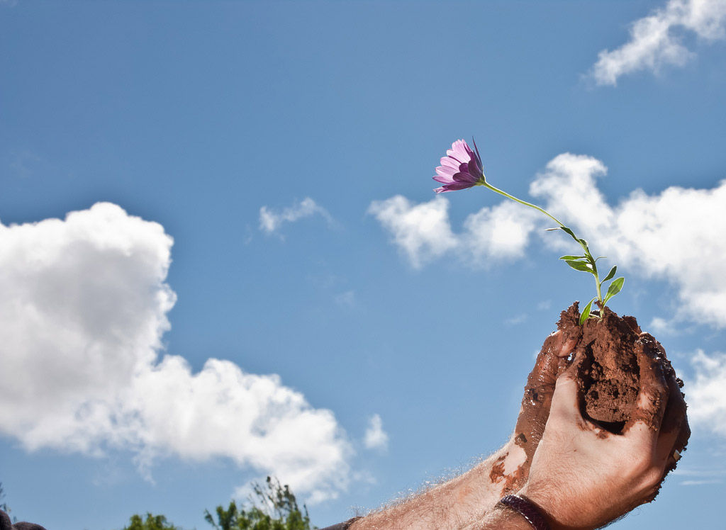 Img desarrollo sostenible01 hd