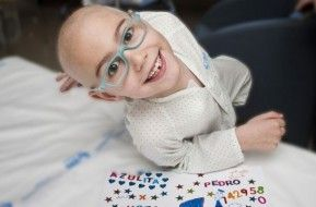 Img dia leucemia art
