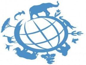 Img dia mundial