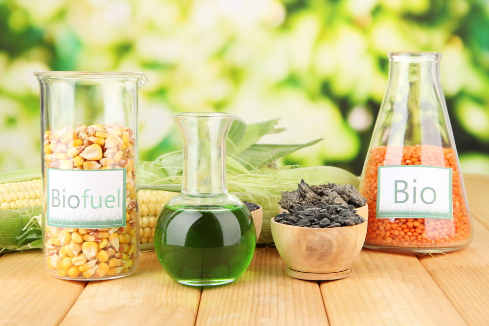 Img diesel casa vegetales