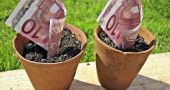 Img dinero crece