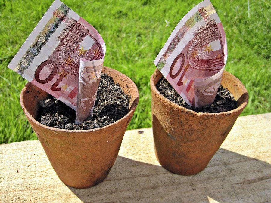 img_dinero crece