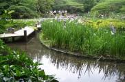img_divisores jardin list_