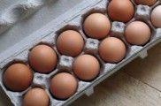 Img docena huevos listp