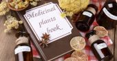 Img efectos sec plantas medica hd