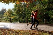 Img ejercicio