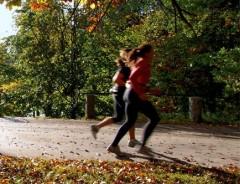 Img ejercicio colesterol art